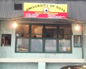 UNIVERSITY OF SUYA-CLOSE UP